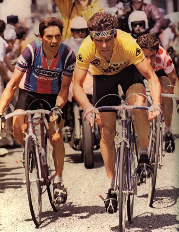 Hinault in Yellow